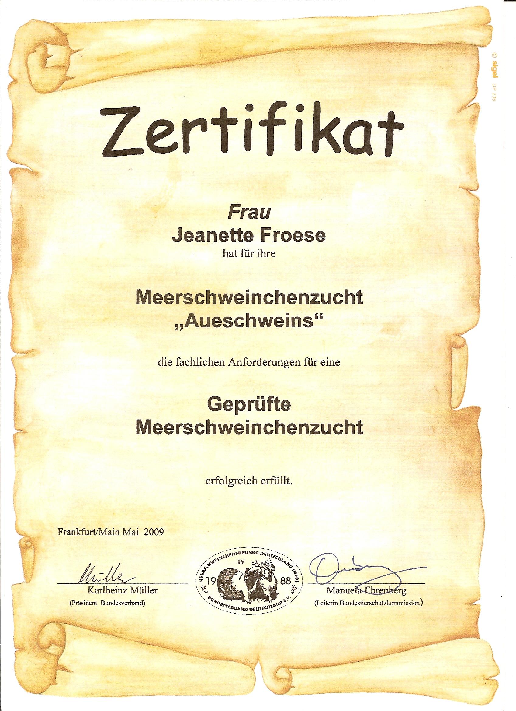 Urkunde MFD